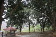 बालीघाट क्षेत्र र त्यहाँ अवस्थित ऐतिहासिक मन्दिर